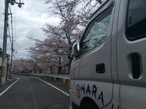 平野デイサービス (6)